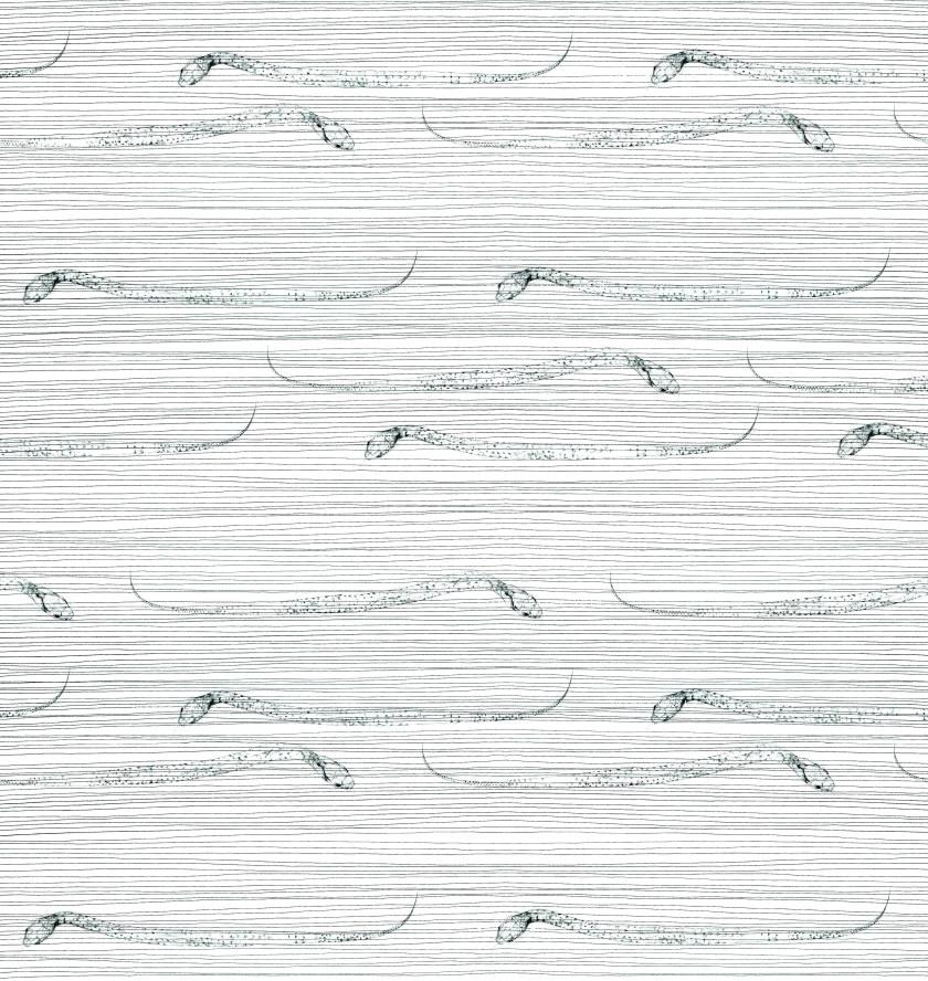 joannalayla monochrome snakes detail watermarked