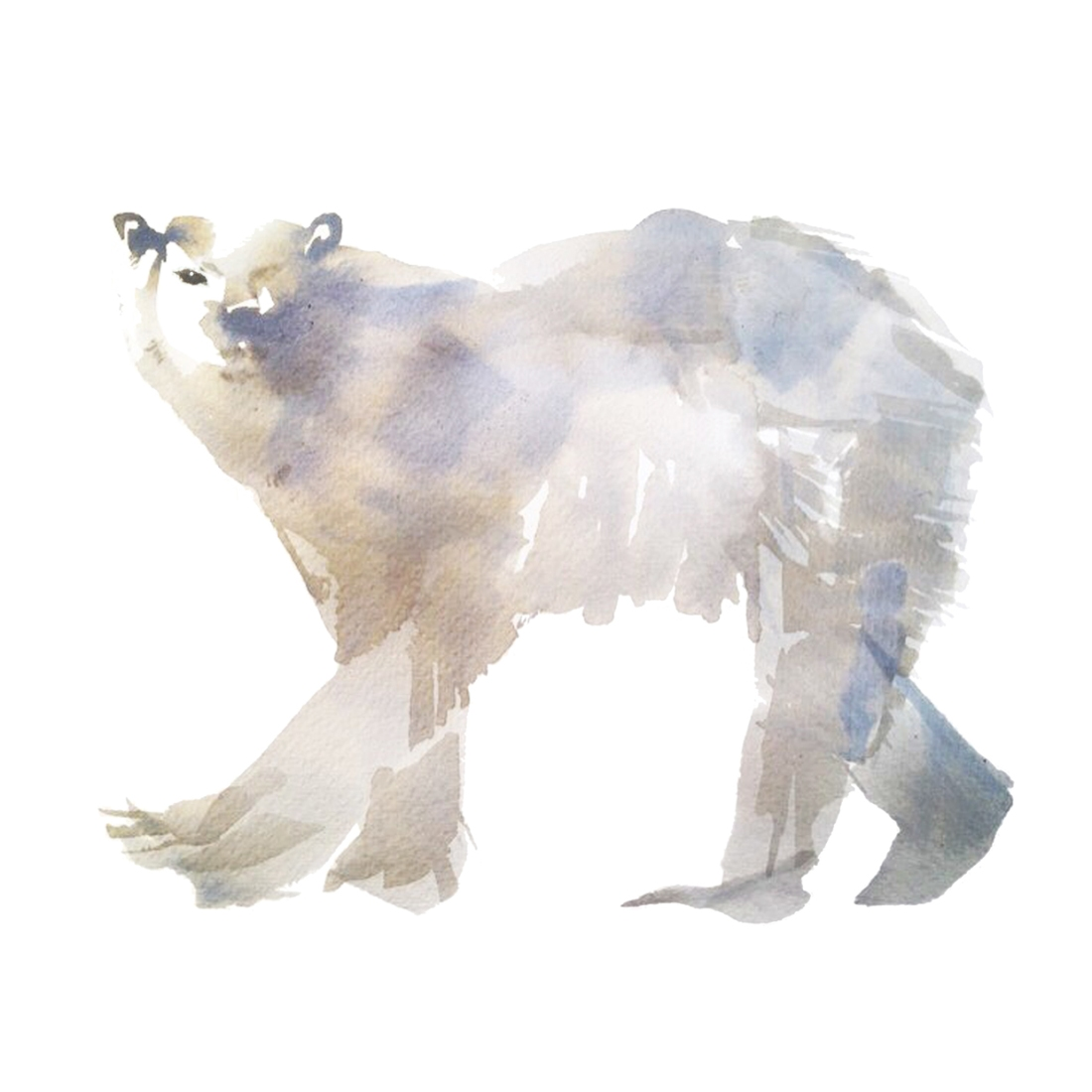 0-joannalayla_66degreesnorth_polarbear_featimage
