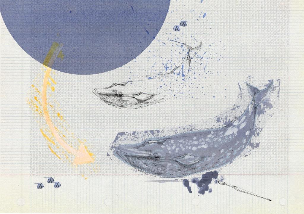 2. joannalayla_blue whale