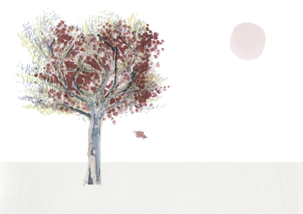 2. joannalayla_tree_leaf falling