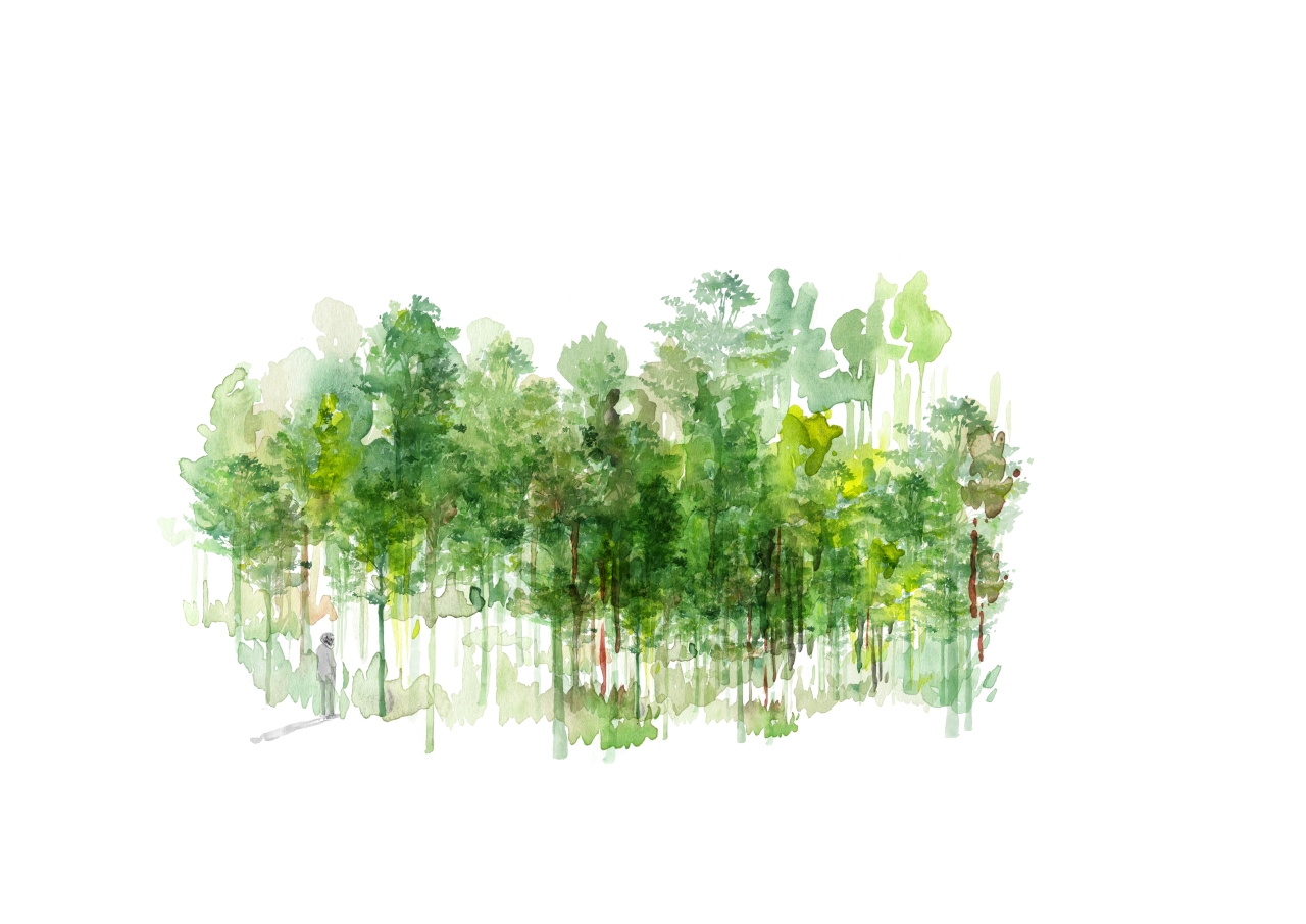 0. joannalayla_lonely tree_outtake_3