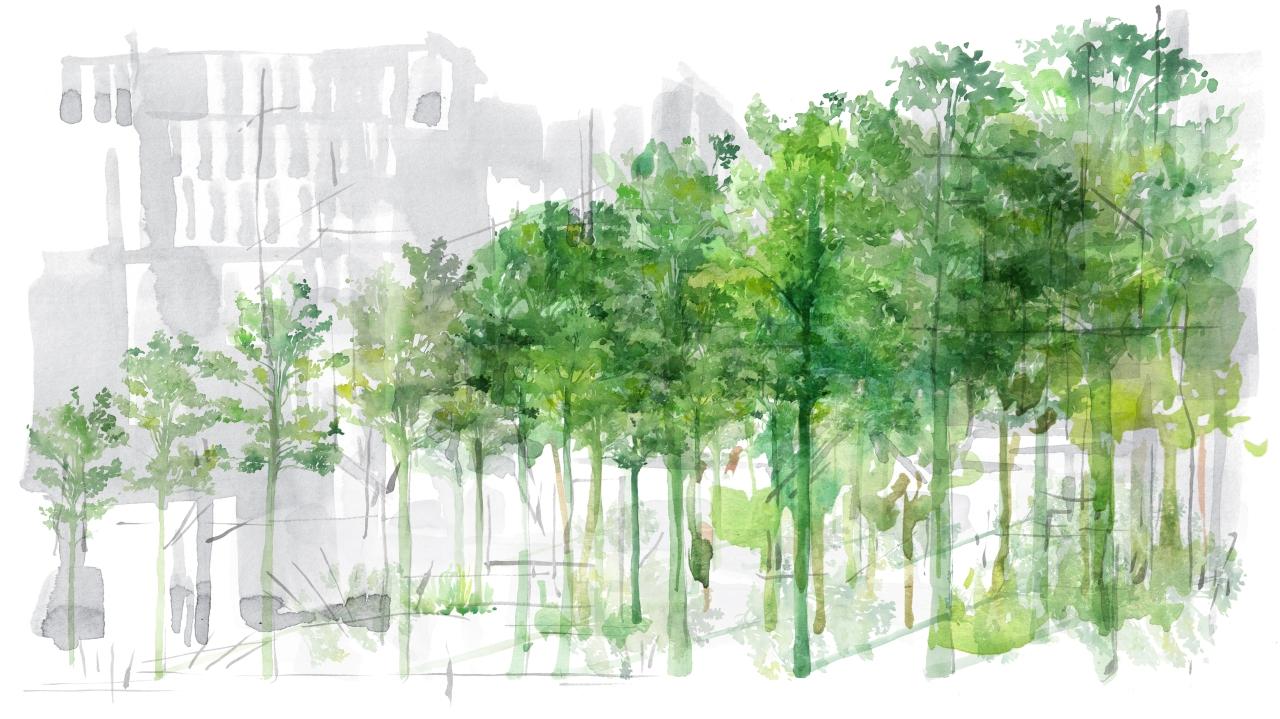 5. joannalayla_scene 5_growing tree series_2