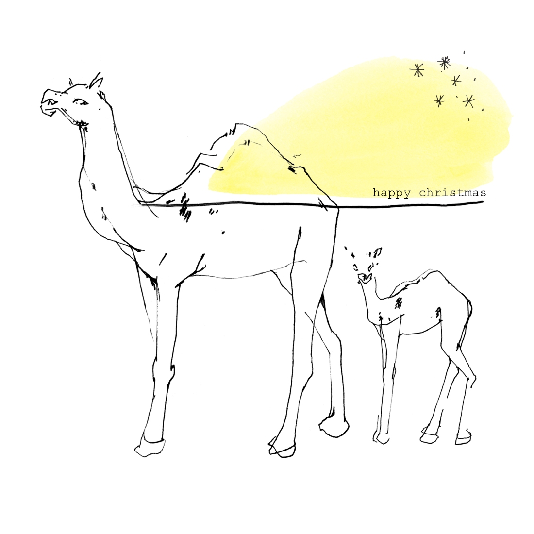 3. joannalayla_camels_colour with text