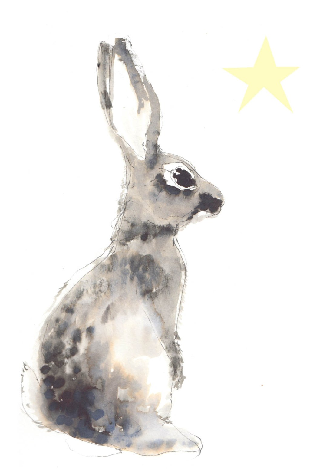joannalayla christmas rabbit star