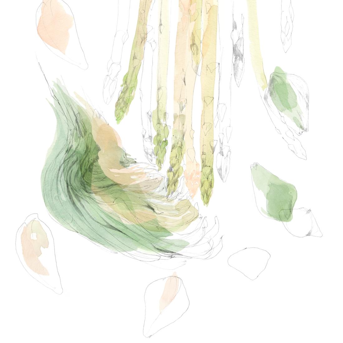 joannalayla_watersideinn_magazine_artichoke and asparagus