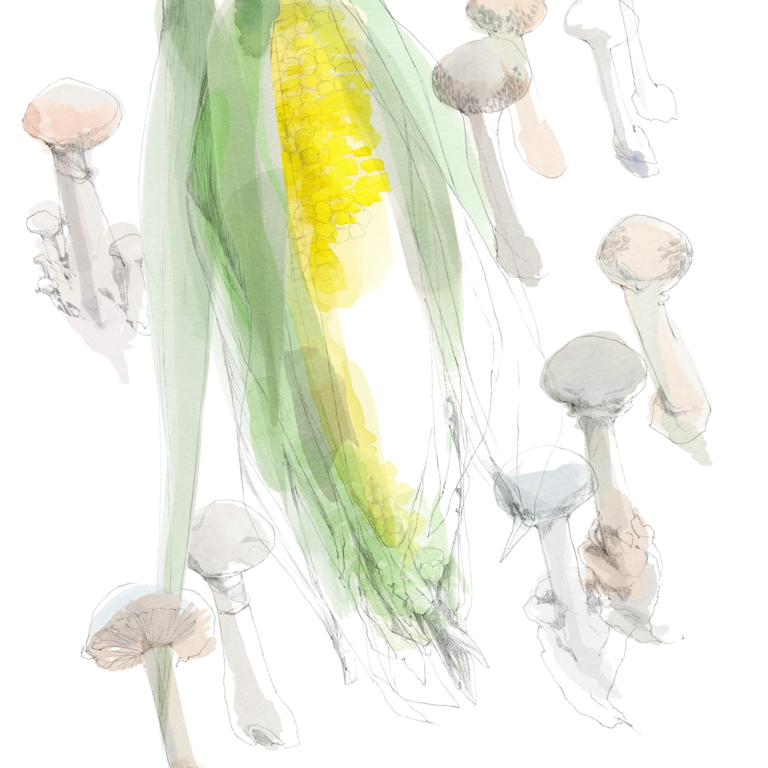 joannalayla_watersideinn_magazine_mushroomsandsweetcorn