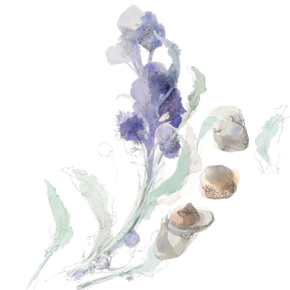 joannalayla_watersideinn_magazine_sprouting and truffle